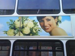 weddingbus.jpg