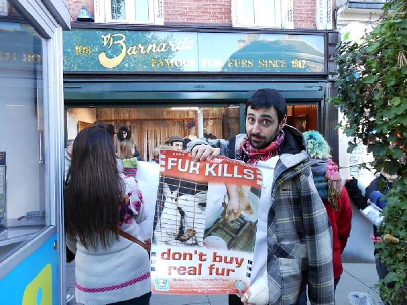 Demonstration against Ireland's fur trade